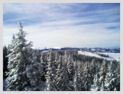 snowski.jpg