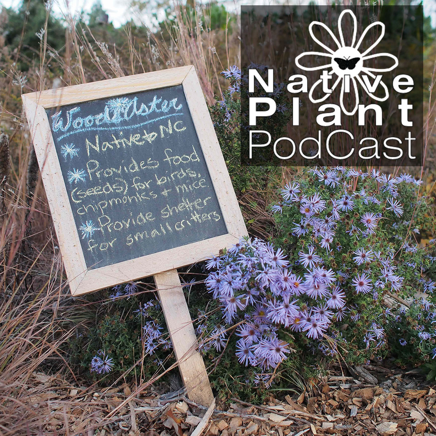 Podcasts - The Native Plant Podcast