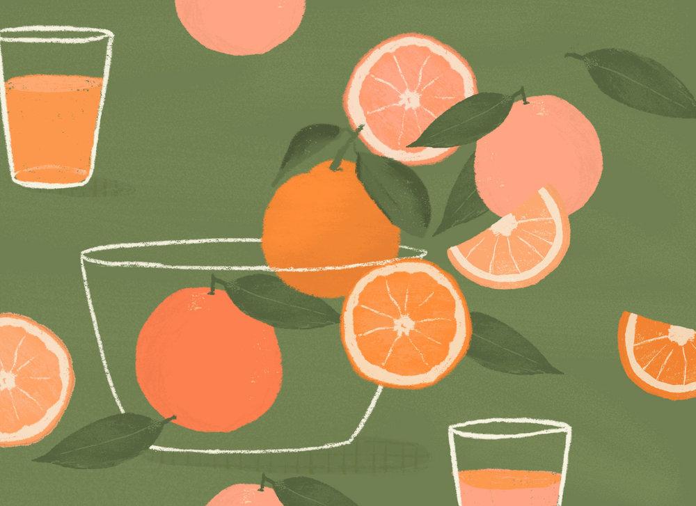 Brook Gossen | Illustrator | Oranges | Freelance Wisdom