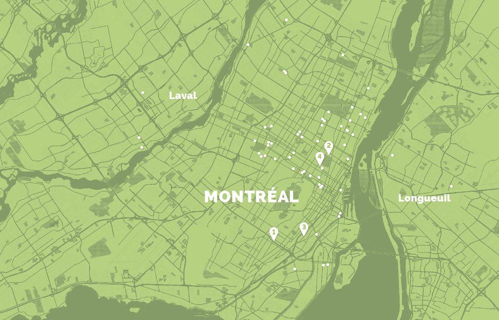 TRANSFORME TA VILLE Transforme ta villeest un appel aux citoyens à effectuer des interventions pour se réapproprier l'espace public de Montréal, Laval et Longueuil, qu'il s'agisse par exemple de projets de quartiers verts, d'économie sociale ou d'art urbain. Plus de 70 projets ont été réalisés, dont voici quatre exemples. Crédit photos:Centre d'écologie urbaine de Montréal