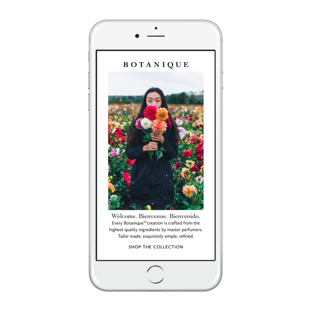 Email marketing  concept  for Botanique.