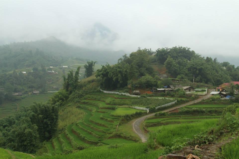 sapa landscape.jpg