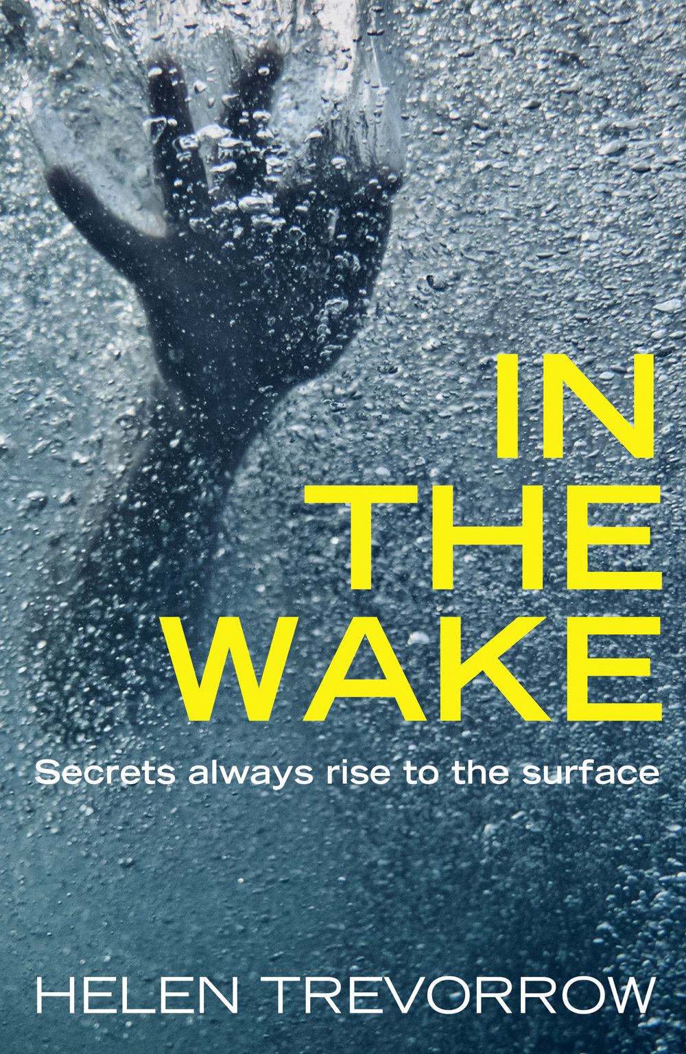 In the Wake cover_final.jpg