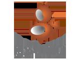 Gsting Logo 2009