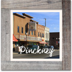 Pinckney, MIchigan homes for sale, Real Estate, Hinton Real estate Group