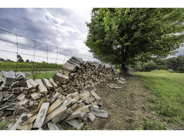 6520 CROFOOT Road, Iosco Twp 48843 - Woodpile