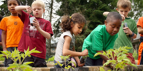 Community Gardening - Hinton Real Estate Group