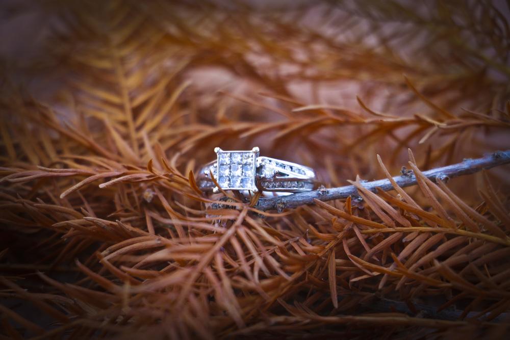 D+V EngagementPhotos2013.jpg_80.jpg