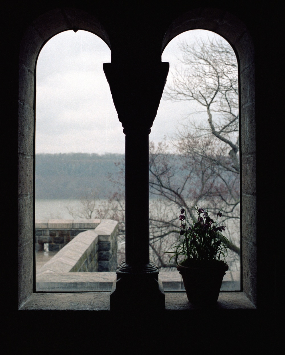 The Cloisters, New York City, NY. 2014. C-Print.