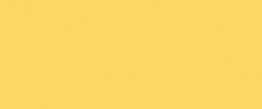 PANTONE 13-0755 Primrose Yellow  By contrast, Primrose Yellow sparkles with heat and vitality. Inviting us into its instant warmth, this joyful yellow shade takes us to a destination marked by enthusiasm, good cheer and sunny days.