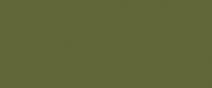PANTONE 18-0107 Kale  Evocative of the great outdoors and a healthy lifestyle, Kale is another foliage-based green that conjures up our desire to connect to nature, similar to the more vivacious Greenery. And, just as we see in nature, this lush and fertile natural green shade provides the perfect complementary background to the more vibrant tones in the palette.