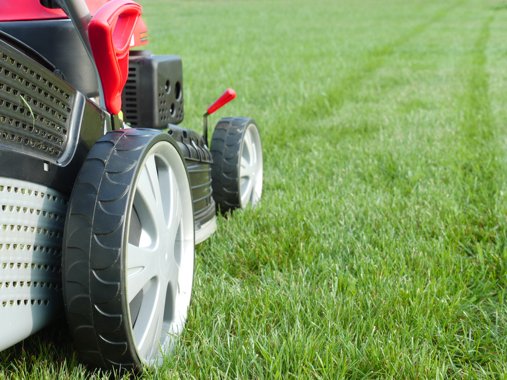 Grass Cutting Property Management Greenville