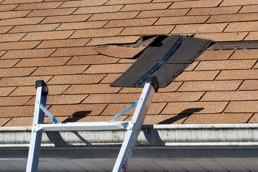 Roof Repair Property Management Easley SC