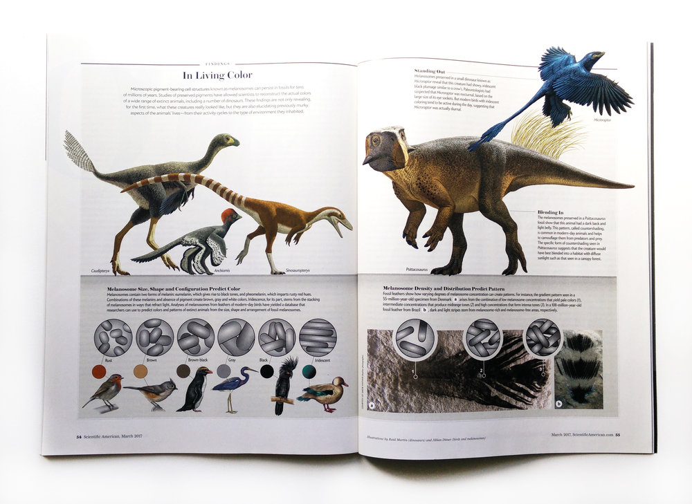 Scientific American Magazine Dinosaur