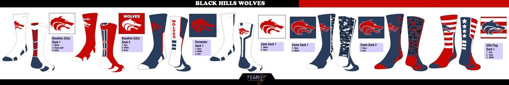 Black Hills High School