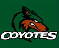 The orange in the coyote logo is TEXAS ORANGE