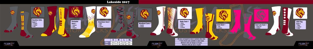 LAKESIDE LIONS FOOTBALL LAYOUT 2017