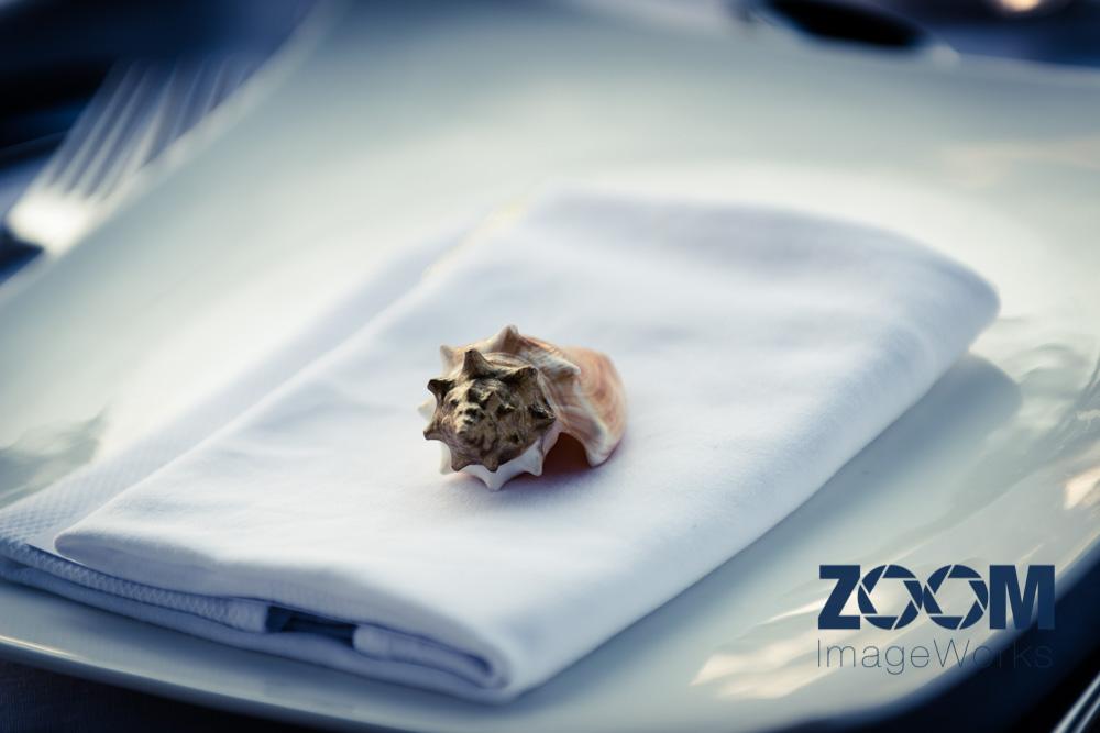 ZOOMImageWorks-Portfolio-42.jpg