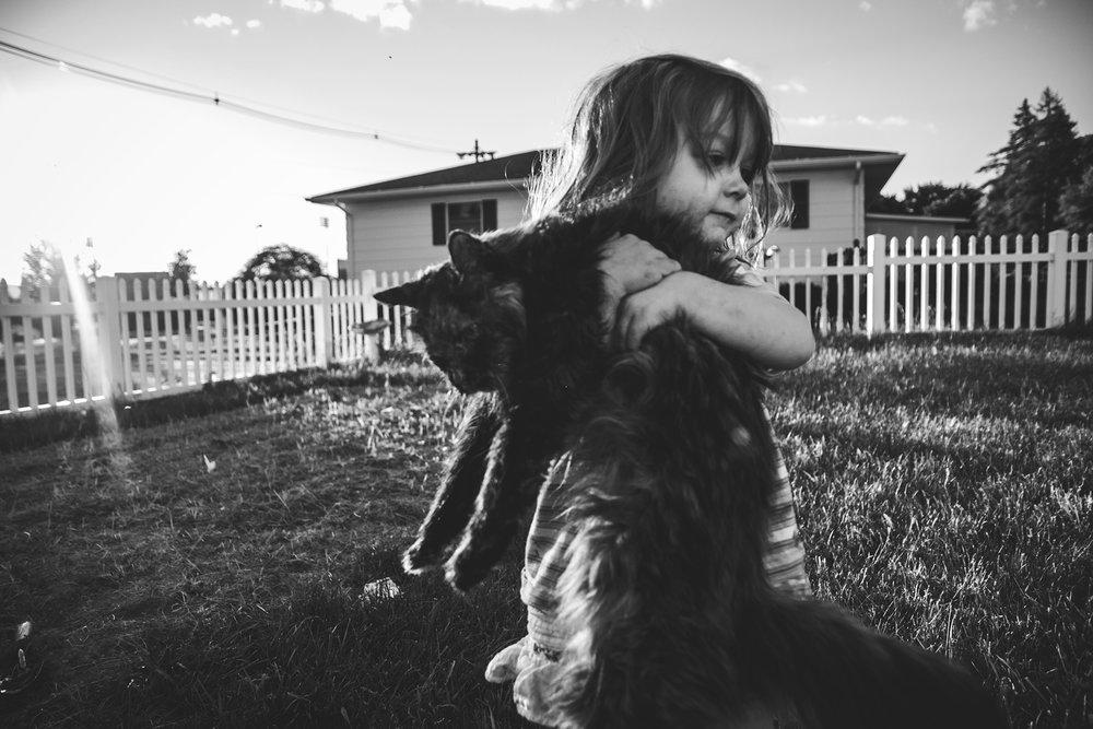 cat Lisa R. Howeler 2017