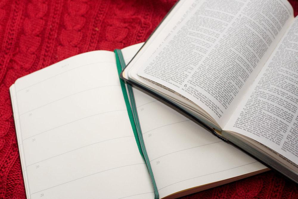 Bible lisa