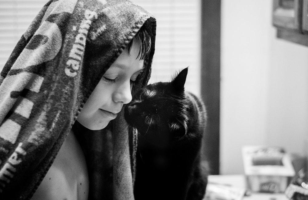 boy and cat copyright Lisa R. Howeler