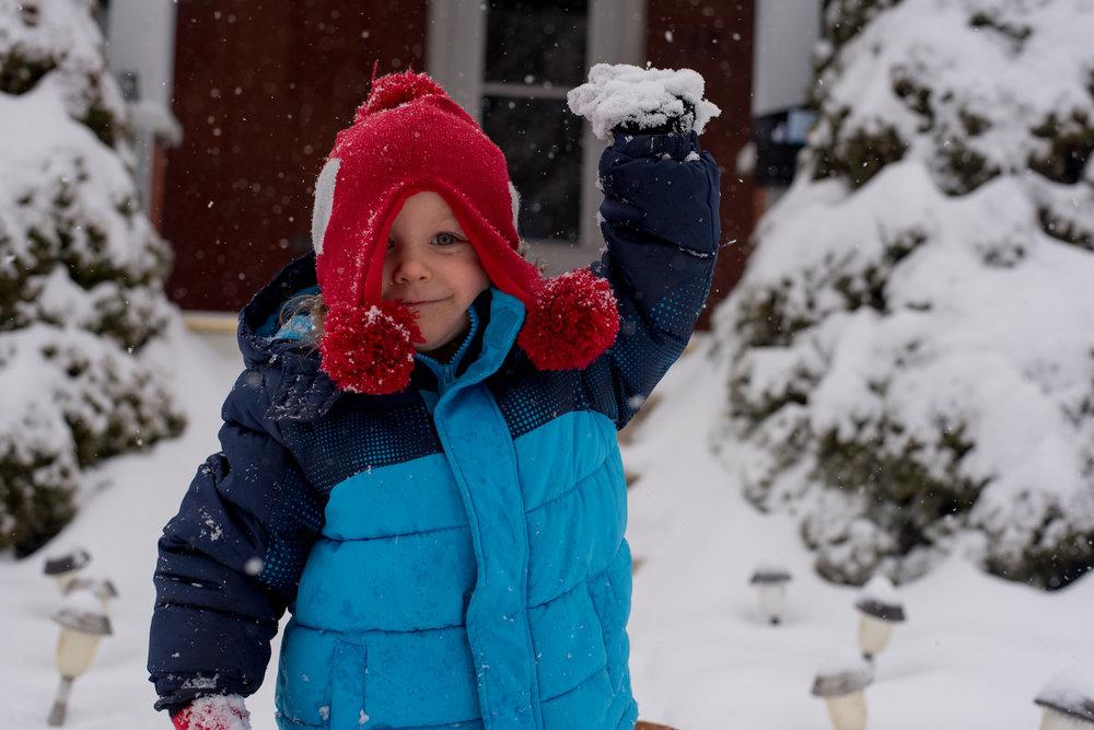 Pennsylvania winter Lisa R. Howeler copyright