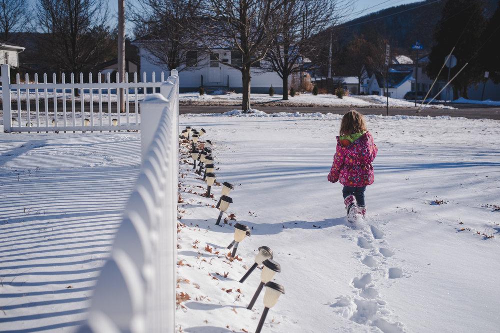 winter in Pennsylvania Lisa R. howeler copyright