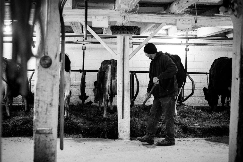Lisa R. Howeler Pennsylvania farming2
