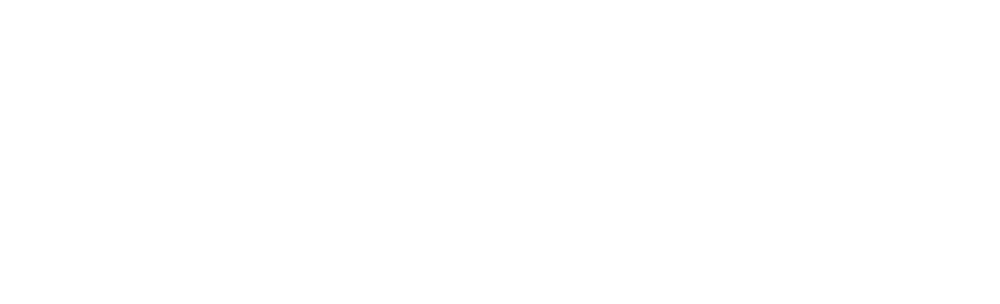 the knight foundation logo