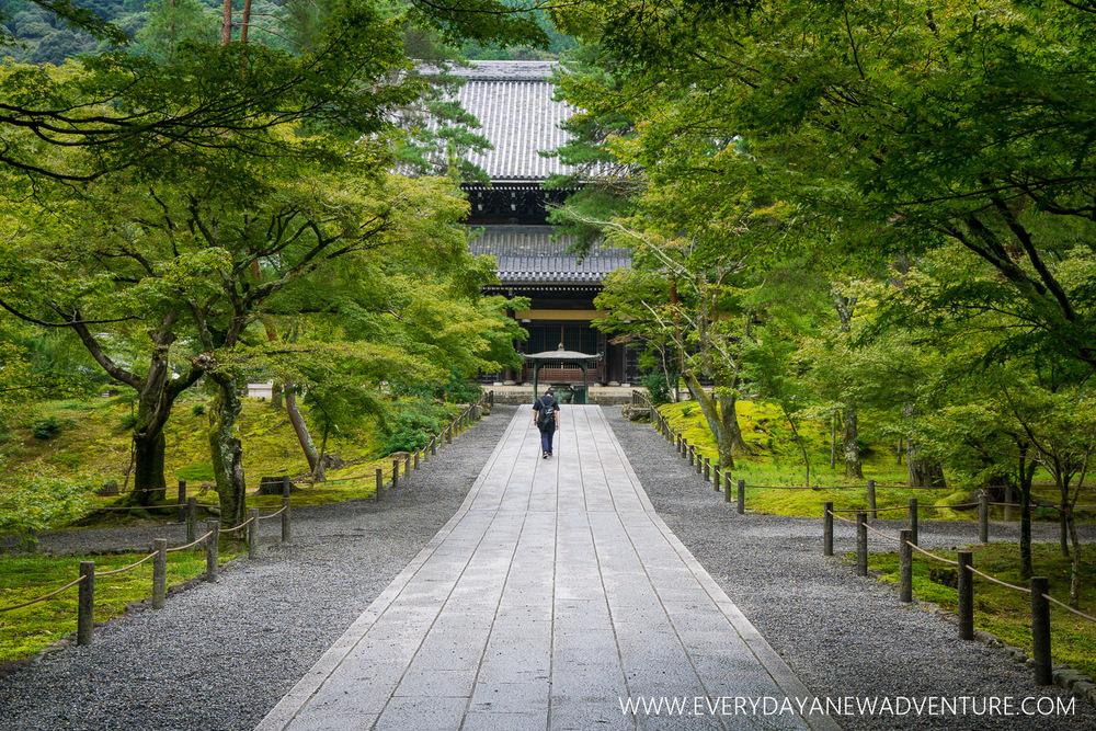 [Squarespace1500-022] Kyoto-08025.jpg