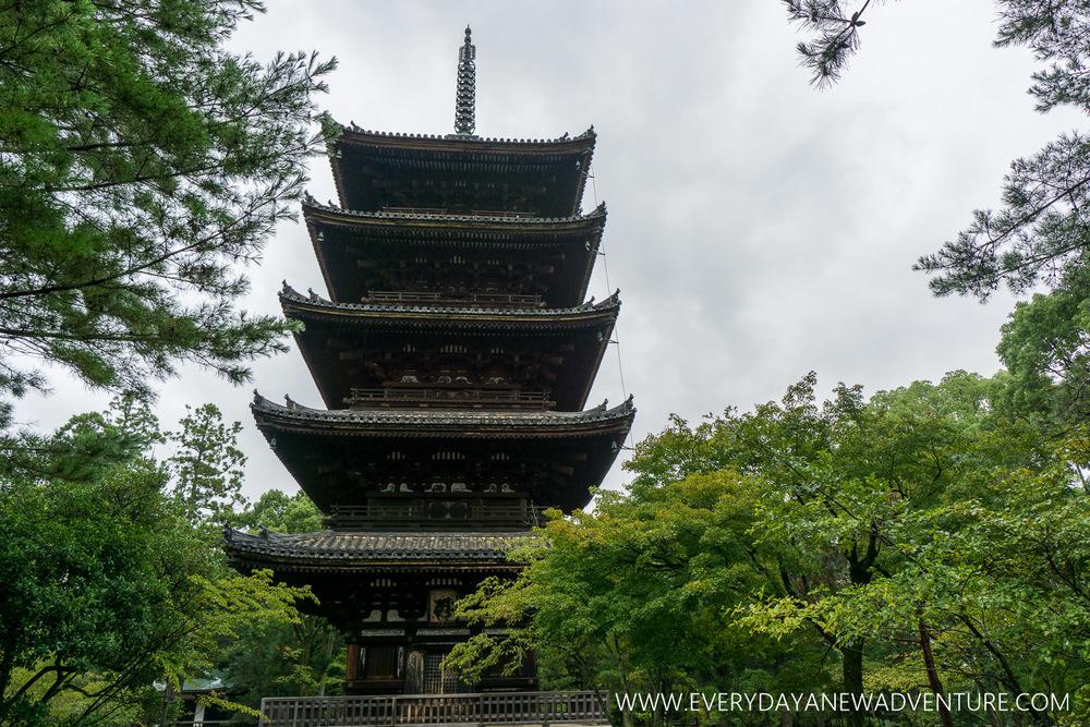 [Squarespace1500-033] Kyoto-08242.jpg