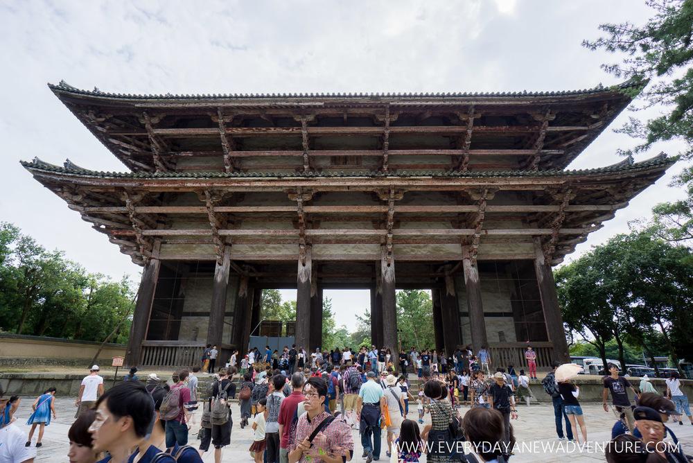[Squarespace1500-073] Nara-09029-HDR.jpg
