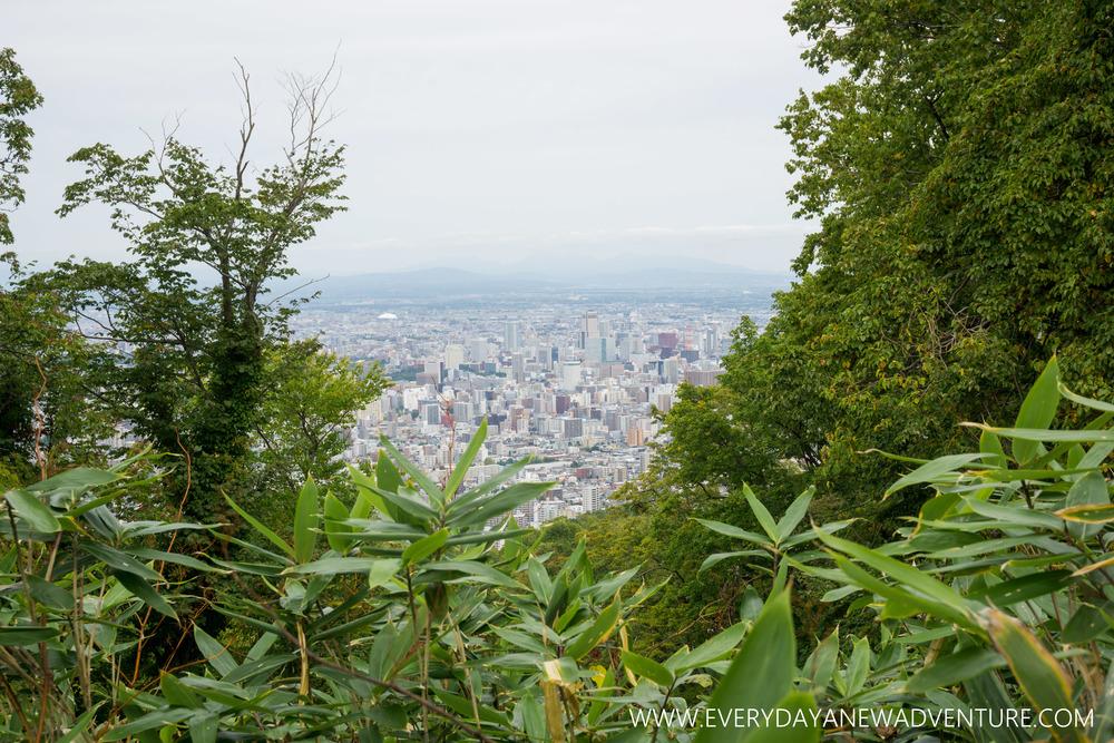 [Squarespace1500-056] Sapporo-09961.jpg