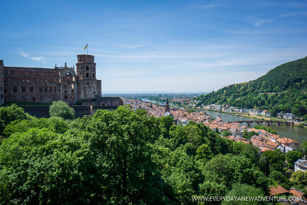 [SqSp1500-013] Heidelberg-05889.jpg