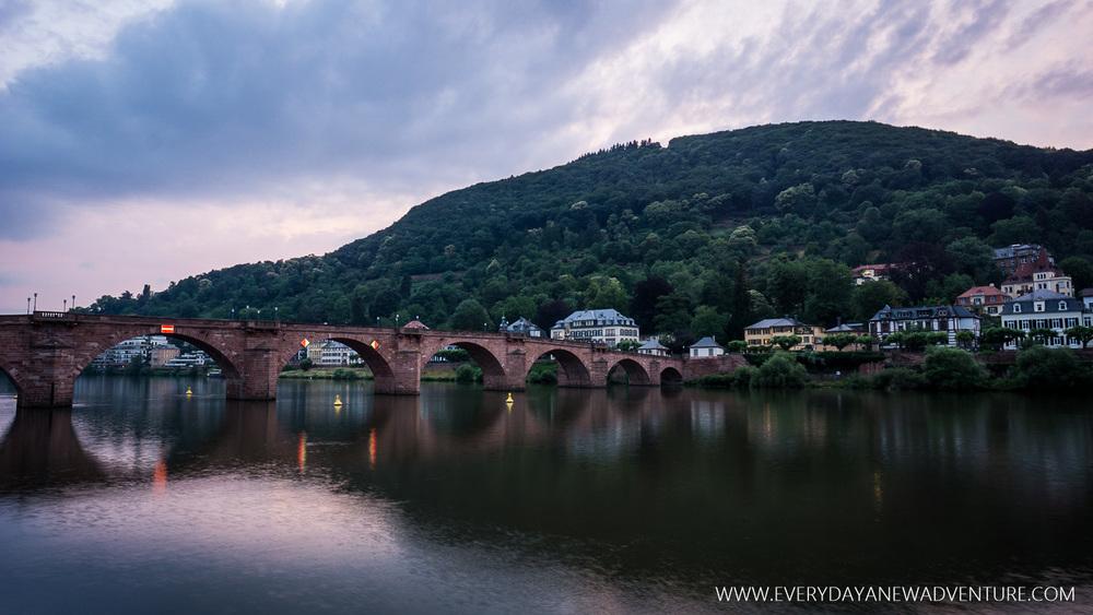 [SqSp1500-023] Heidelberg-05988.jpg