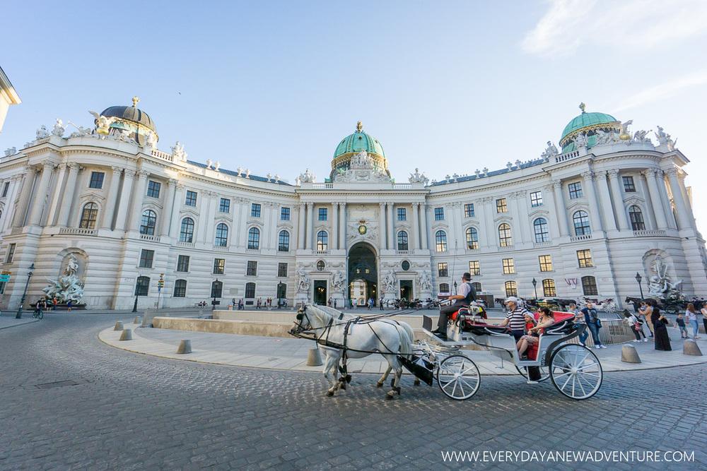 [SqSp1500-031] Vienna-00787.jpg