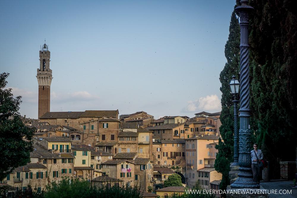 [SqSp1500-016] Siena-730.jpg