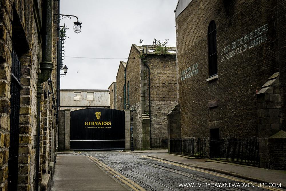 [SqSp1500-006] Dublin (2nd Visit)-27.jpg