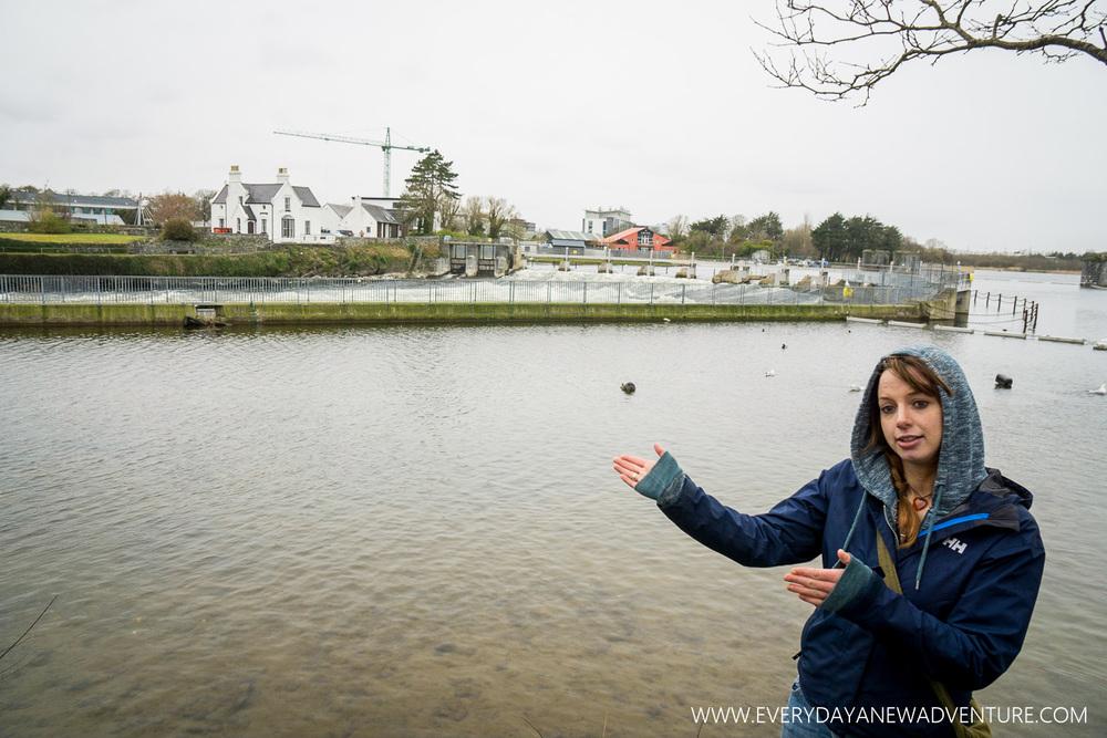 [SqSp1500-020] Galway-397.jpg