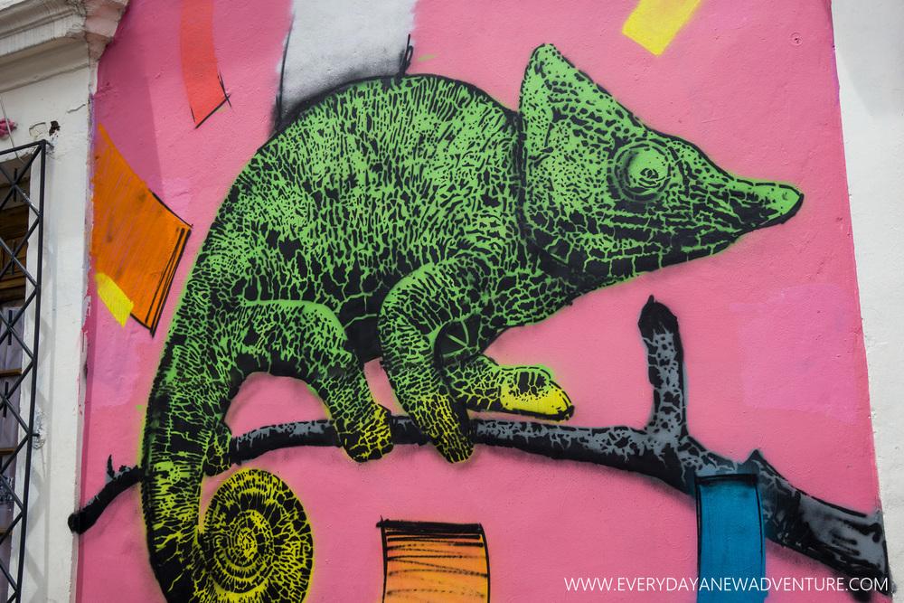 [SqSp1500-052] Bogota-01948.jpg