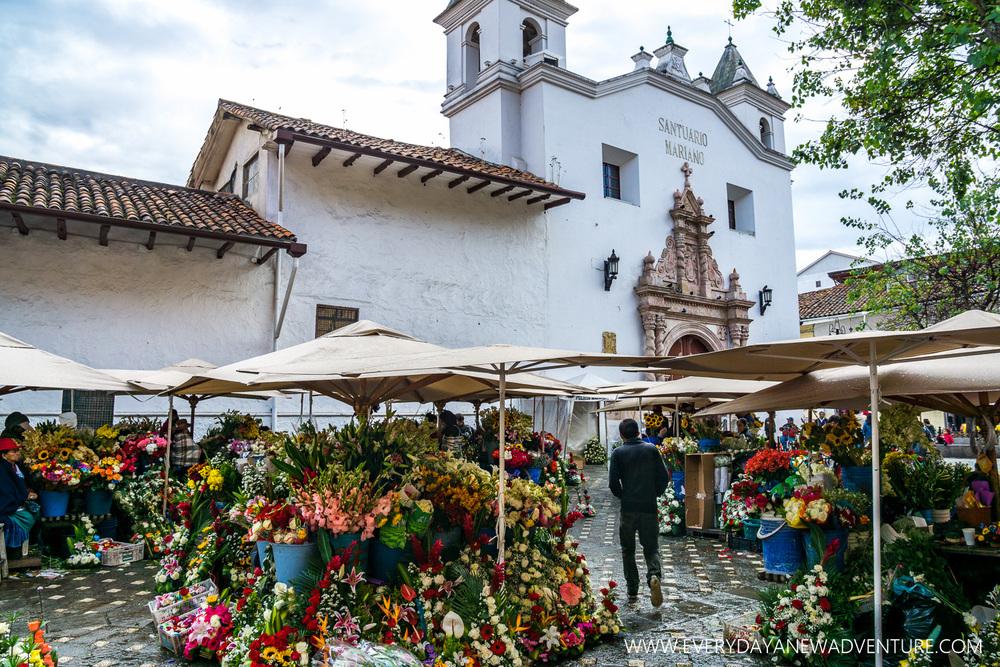 [SqSp1500-033] Cuenca-03006.jpg