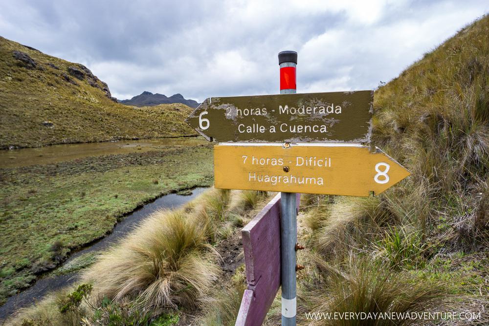 [SqSp1500-054] Cuenca-03586.jpg