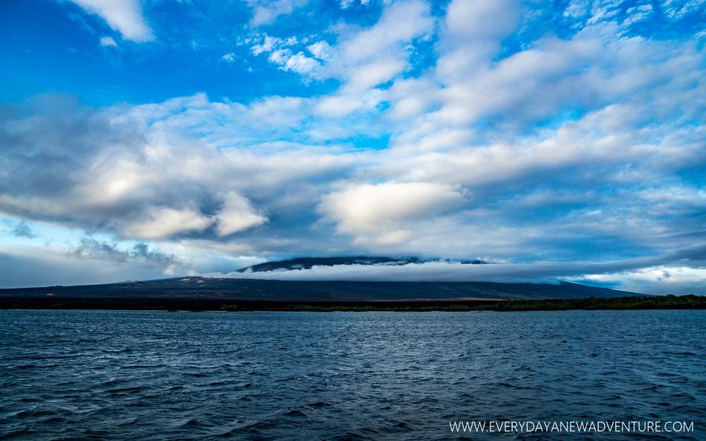 [SqSpGallery-010] Galapagos-312.jpg