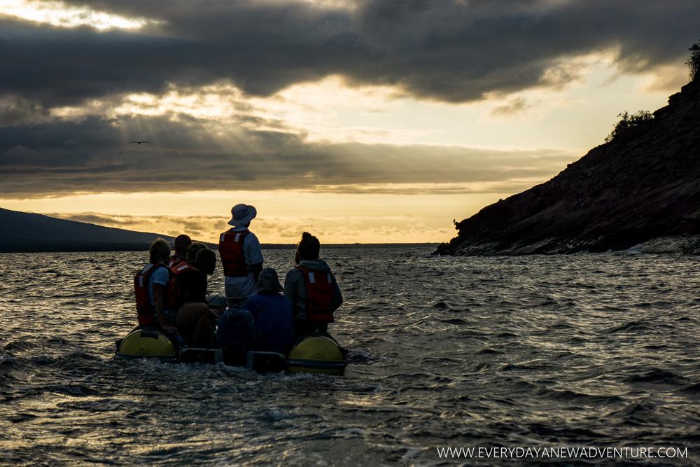 [SqSpGallery-027] Galapagos-826.jpg