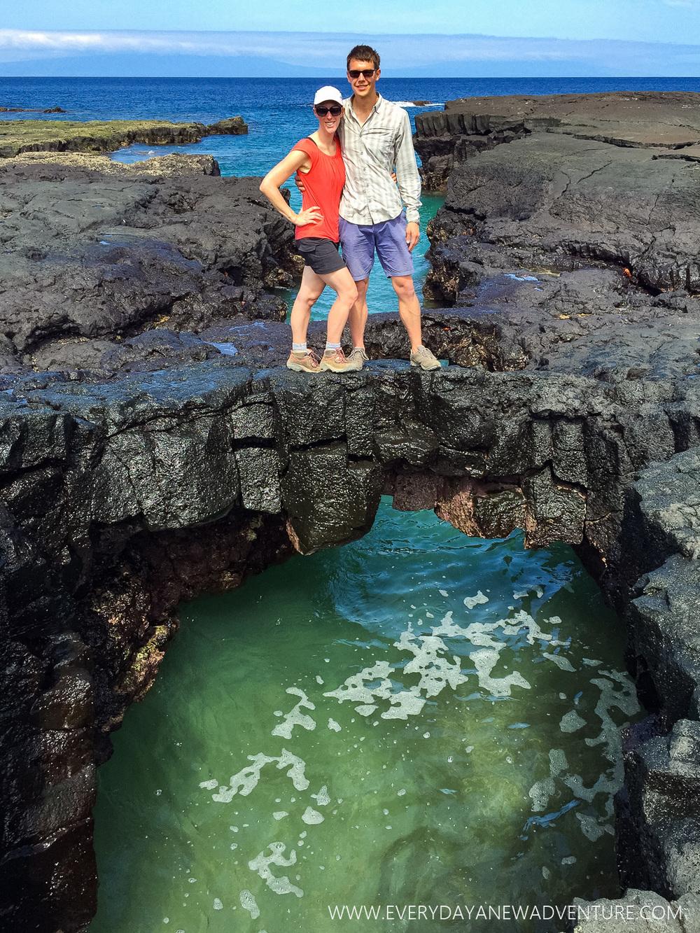 [SqSpGallery-035] Galapagos-1144.jpg