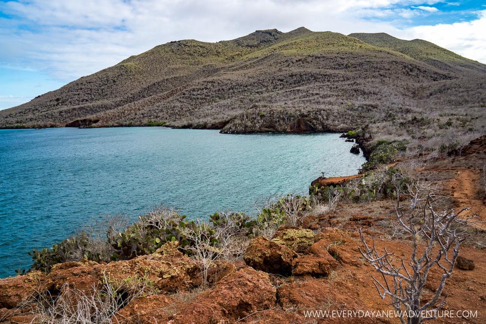 [SqSpGallery-049] Galapagos-1467.jpg