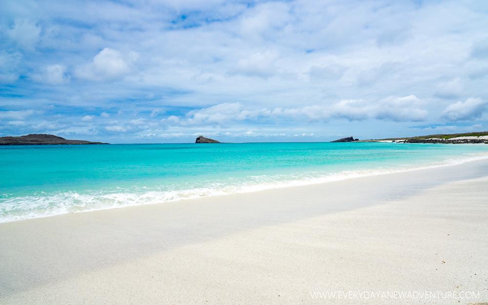 [SqSpGallery-109] Galapagos-3116.jpg