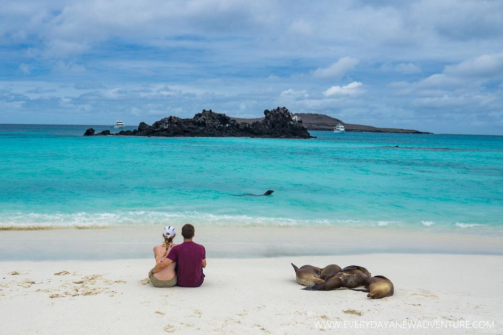 [SqSpGallery-116] Galapagos-3031.jpg