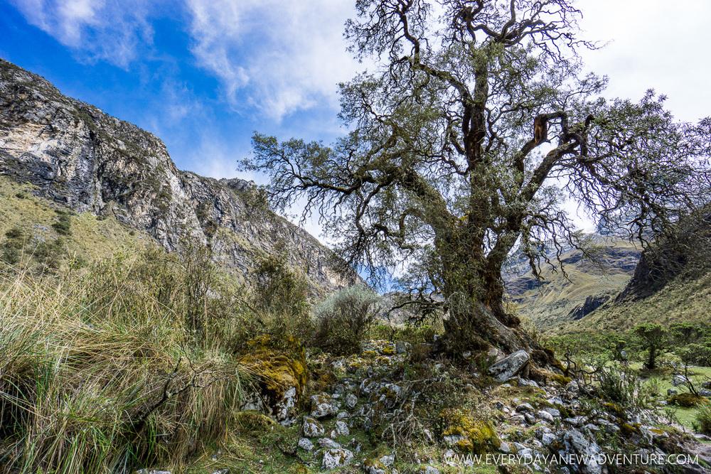 [SqSp Blog-002] Huaraz-06425.jpg