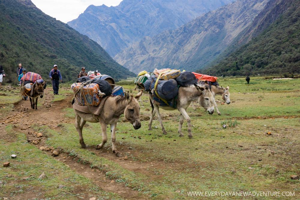 [SqSp Blog-021] Huaraz-05483.jpg